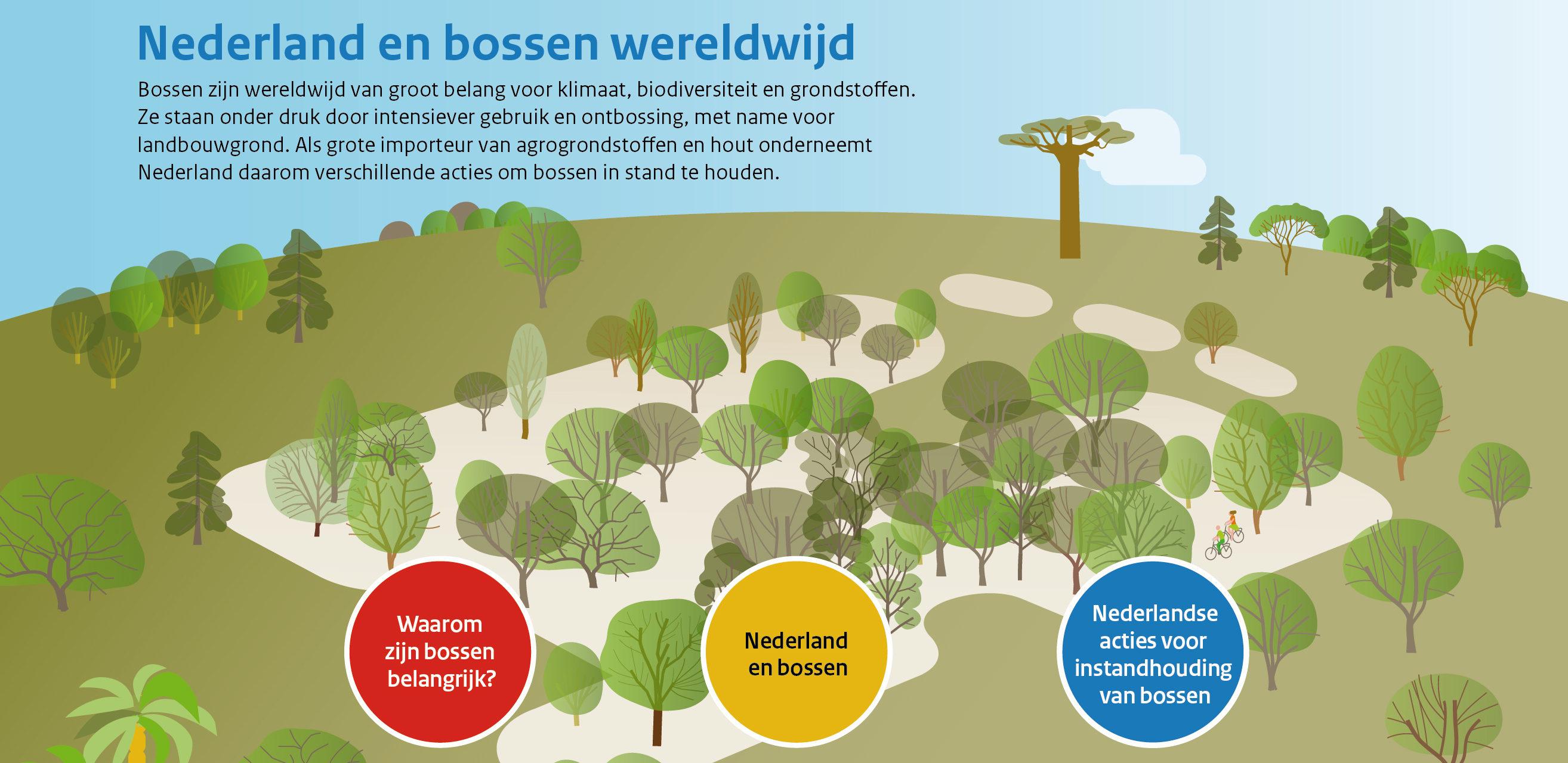Nederland en Bossen wereldwijd